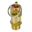 Air Safety Valve 1/4″ 8bar